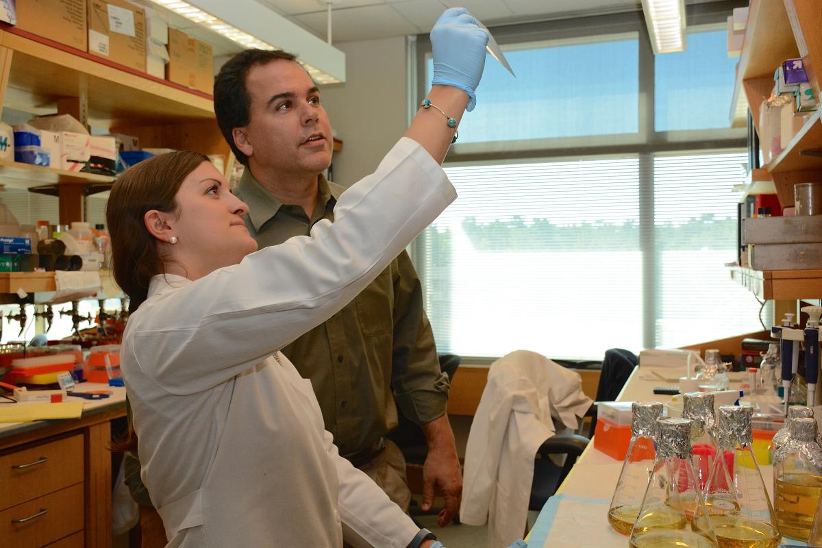 Angie Gaviglio, Ph.D. candidate, Molecular Cancer Biology, consults with Gerard Blobe, M.D., in whose lab she works. Gaviglio is also an author.