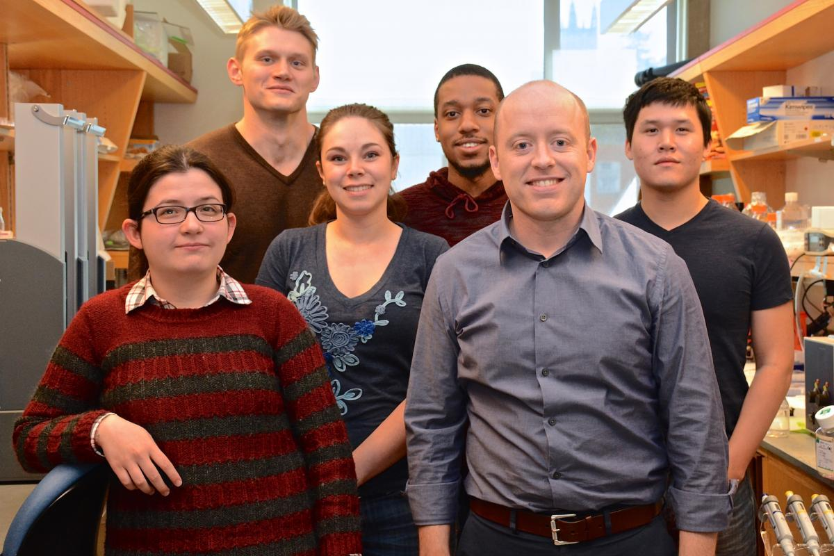 Members of the Wood Lab, from back to front: Graduate students Peter Winter and Lorin Crawford; (middle row) post doctoral associate Katie Singleton, PhD; and Kevin Lin; (front) Merve Cakir, MS, ; and Kris Wood, PhD.