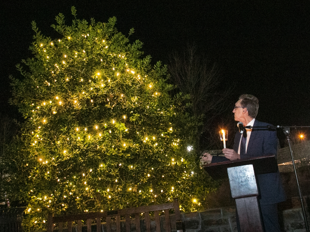 Tree of Hope lit up